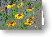 Kay Sawyer Greeting Cards - Dark Daisy Greeting Card by Kay Sawyer