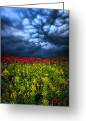 Contest Greeting Cards - Dark Mood Greeting Card by Phil Koch