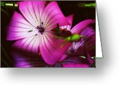 Purple Greeting Cards - Dark Purple Greeting Card by Cathie Tyler