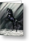 Horses Pastels Greeting Cards - Dark Splendor Greeting Card by Kim McElroy