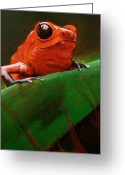 Photo-realism Painting Greeting Cards - Dart Frog Greeting Card by Brian Carlton