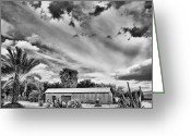 Indian Valley Farm Greeting Cards - Date Farm in La Quinta Greeting Card by Dominic Piperata