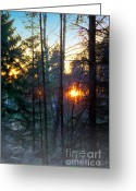 Bodo Herold Greeting Cards - Dawn Greeting Card by Bodo Herold
