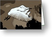 Egret Digital Art Greeting Cards - Dawn Flight Greeting Card by Lisa Scott
