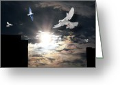 Terry Digital Art Greeting Cards - Dawn Flight Greeting Card by Terry Wallace
