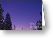 Janie Greeting Cards - Dawn From My Window Greeting Card by Janie Johnson