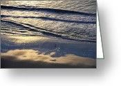 Ocean Front Greeting Cards - Dawn Greeting Card by Gerlinde Keating - Keating Associates Inc