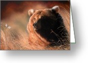 Animal Portrait Pastels Greeting Cards - Day Dream Greeting Card by Deb Owens