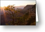 Grand Canyon Greeting Cards - Daybreak at Mather Point Greeting Card by Adam Pender