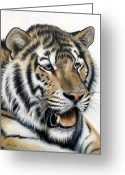 Airbrush Greeting Cards - Daydream Greeting Card by Sandi Baker
