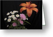 Lilies Greeting Cards - Daylily and Roses Greeting Card by Michael Peychich
