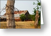 Old Barns Greeting Cards - Days Gone By Greeting Card by Lisa Moore