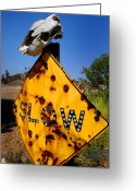 Cow Greeting Cards - Dead End Greeting Card by Craig Incardone
