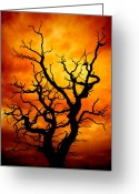 Threatening Greeting Cards - Dead Tree Greeting Card by Meirion Matthias