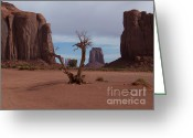 Monument Valley Photo Greeting Cards - Dead-Wood Greeting Card by Luke Moore