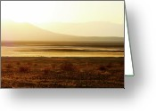 Gold Greeting Cards - Death Valley - A natural geologic museum Greeting Card by Christine Till