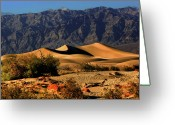 Mountain Ranges Greeting Cards - Death Valleys Mesquite Flat Sand Dunes Greeting Card by Christine Till