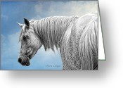 Photo Manipulation Greeting Cards - Debbani - The Flea Bitten Mare Greeting Card by Karen Slagle