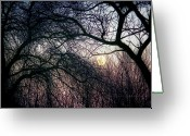 Moonrise Greeting Cards - December Moon Greeting Card by Mimulux patricia no
