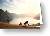 Photo Art Greeting Cards - Deer at sunset Greeting Card by Pixel  Chimp