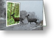 Out Of Frame Greeting Cards - Deer Crossing Greeting Card by Methune Hively