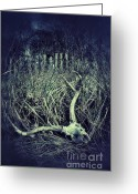Death Head Greeting Cards - Deer Skull in Grass Greeting Card by Jill Battaglia