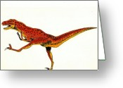 Dinosaur Greeting Cards - Deinonychus Greeting Card by Michael Vigliotti