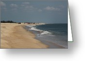 Seabirds Greeting Cards - Delaware Shoreline Looking North from Indian River Inlet Greeting Card by Jim Vansant