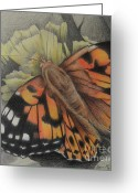 Dawn Jones Greeting Cards - Delicate Beauty Greeting Card by Dawn Jones