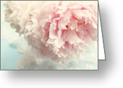 Chic Greeting Cards - Delicate Greeting Card by Sylvia Cook