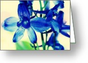 Blue Delphinium Greeting Cards - Delphinium Greeting Card by Cathie Tyler