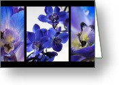 Blue Delphinium Greeting Cards - Delphinium Study Greeting Card by Lauren Radke