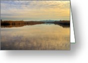 Denmark Greeting Cards - Delta Greeting Card by Gert Lavsen