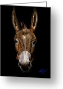 Democrat Painting Greeting Cards - Dem-Donkey Greeting Card by Reggie Duffie
