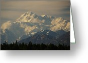 National Pyrography Greeting Cards - DENALI      great one Greeting Card by Bj Hodges