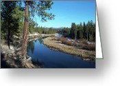 Ponderosa Greeting Cards - Deschutes River Greeting Card by Bonnie Bruno
