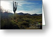 2hivelys Art Greeting Cards - Desert Afternoon Greeting Card by Methune Hively