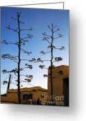 Places Greeting Cards - Desert Dwellings Greeting Card by Ben and Raisa Gertsberg
