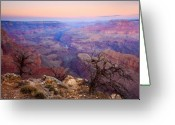 Barren Greeting Cards - Desert Glow Greeting Card by Mike  Dawson