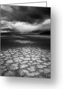 Storm Cloud Greeting Cards - Desert Storm Greeting Card by Tim Gallivan