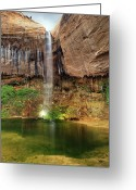 Pouring Greeting Cards - Desert Waterfall Oasis Greeting Card by Leland Howard