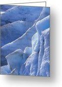 Exit Greeting Cards - Detail Of Blue Ice On Exit Glaicer Greeting Card by Rich Reid