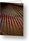 Inside Of Greeting Cards - Detail Of Piano Strings Greeting Card by Christopher Kontoes