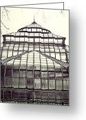 Conservatory Photo Greeting Cards - Detroit Belle Isle Conservatory Greeting Card by Alanna Pfeffer