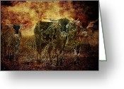 Idaho Artist Greeting Cards - Devils Herd - Texas Longhorn Cattle Greeting Card by Cindy Singleton