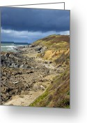 Slates Greeting Cards - Devonian Slate Coastline Greeting Card by Dr Keith Wheeler