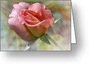 Larry Walker Greeting Cards - Dew Drop Pink Rose Greeting Card by J Larry Walker