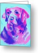Vibrant Pastels Greeting Cards - Dharma Greeting Card by Christine Crosby