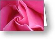 Pink Flower Greeting Cards - Diagonal of Rose Greeting Card by Jacqueline Migell