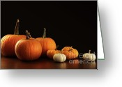 Pumpkin Farm Greeting Cards - Different sized pumpkins and gourds on dark  Greeting Card by Sandra Cunningham